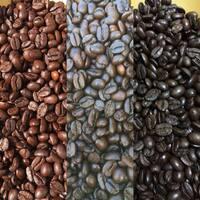 Stessa tostatura o diversa? #caffepasqualecola#ognorticonsola #passion #love #cool #instagood